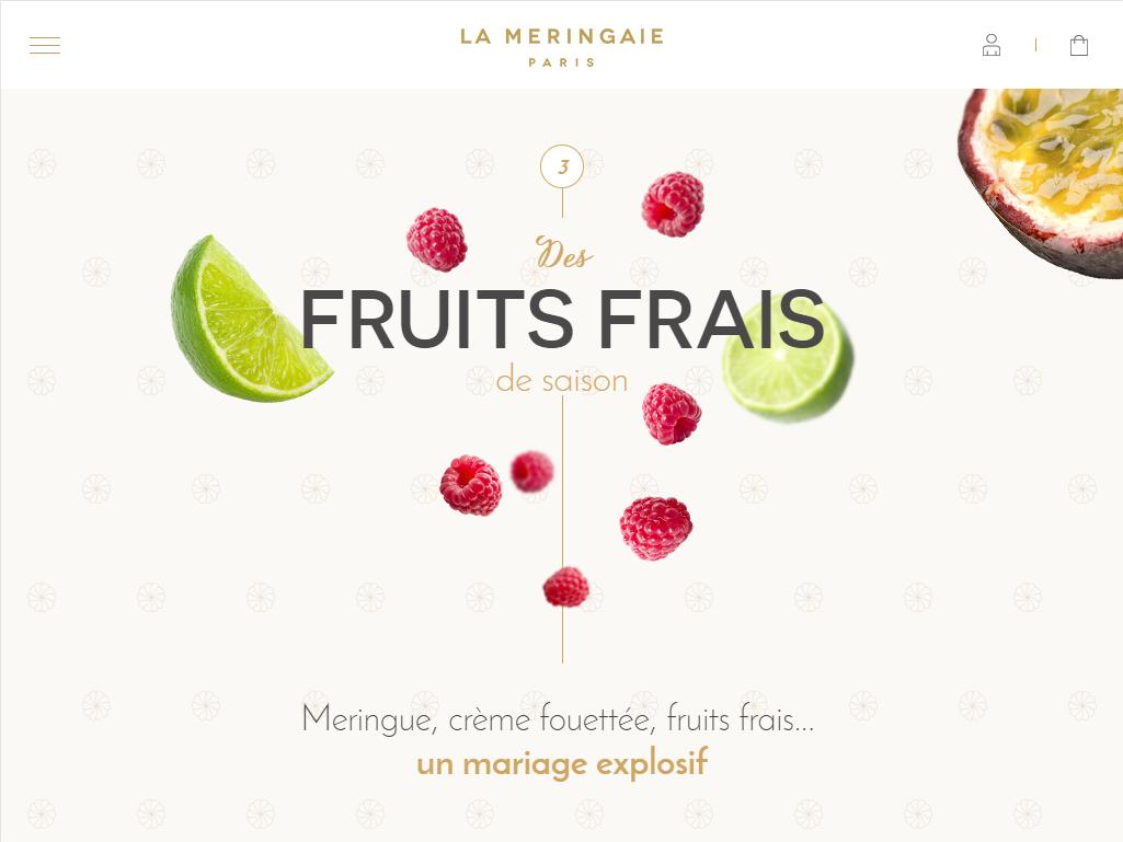 creation-de-site-internet-a-poitiers-infographsite-poitiers-la-meringaie-paris-4